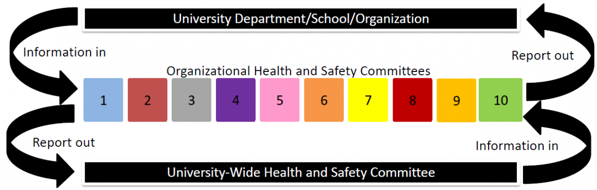 Information and reporting structure of the Health and Safety Committees