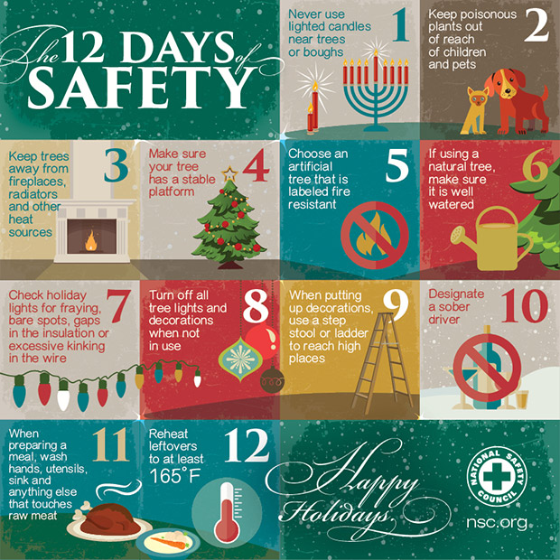 12 days of safety infographic